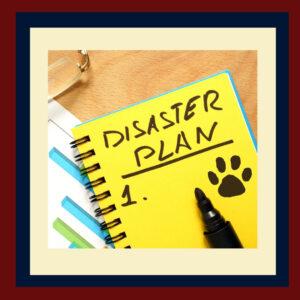 Natural Disaster Plan