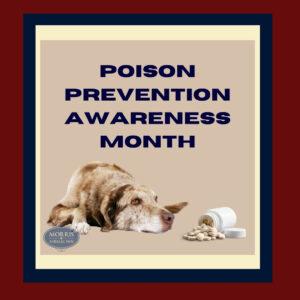 Poison Prevention Month