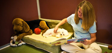 Reading a bedtime story to a dog
