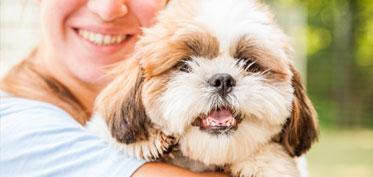 Staff hugging a smiling dog