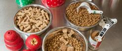Bowls of dog food